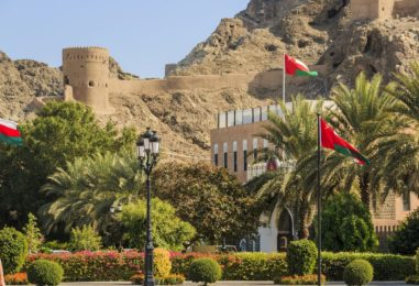 Fintech Still in Infancy in Oman Despite Growth Potential