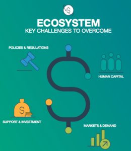 Ecosystem challenges MENA