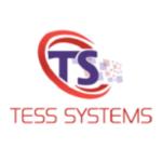 Tess Payments